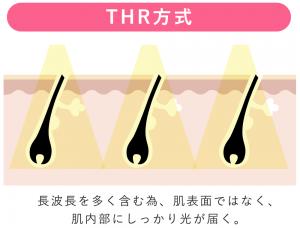 THR脱毛の仕組み